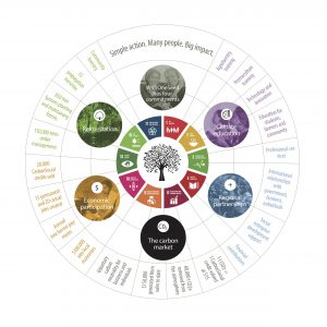 WOS activity wheel